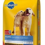 Target: Pedigree Dog Food 20 lb. Bag Only $3.32